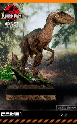 Figurine Velociraptor Closed Mouth Ver. Prime 1 Studio
