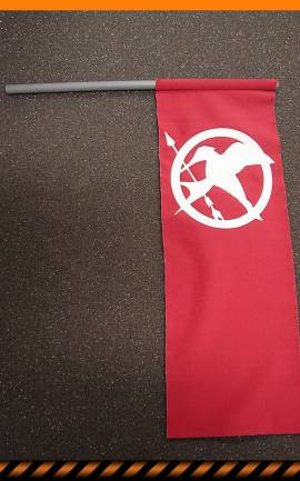 Drapeau The Hunger Games